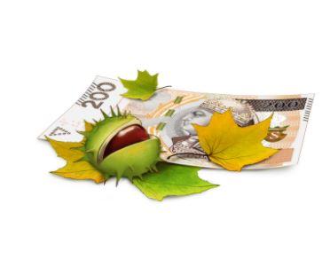 PKO BP Pożyczka gotówkowa online